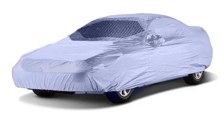 burqa_car.jpg