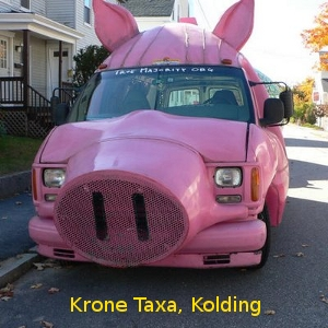 kolding_taxa_1