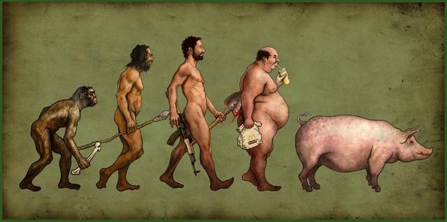 Hodjas evolution ?