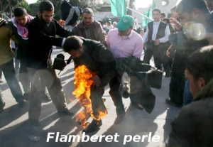gazan_torched
