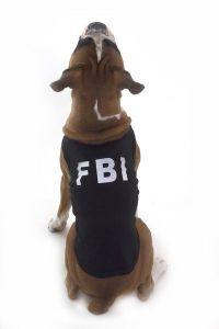 FBI-vovse