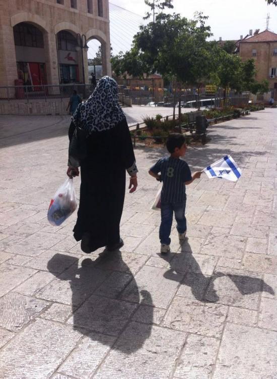 arab-israeli-flag-550x750