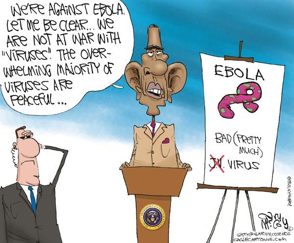 Obama  ej i krig med vira