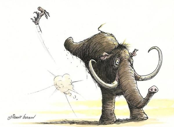 Elefanten slog æslet