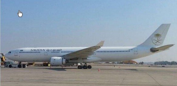 Saudiarabisk fly i Israel