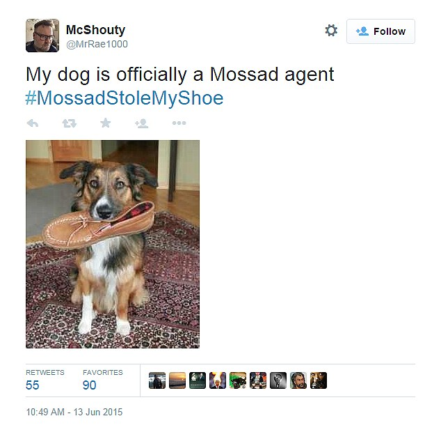 Mossad dog