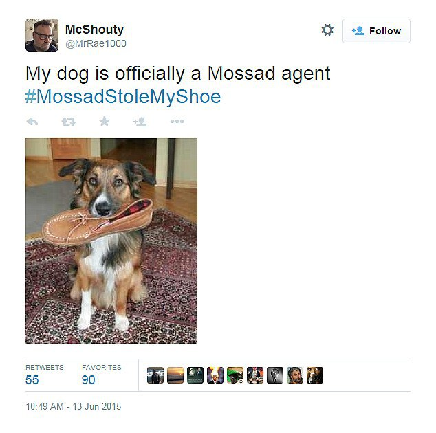 mossad-dog