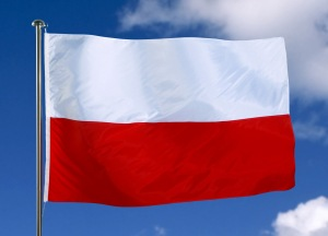 © CE/ECFlag of Poland  6/12/2003