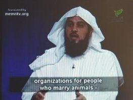 MARRY_ANIMAL