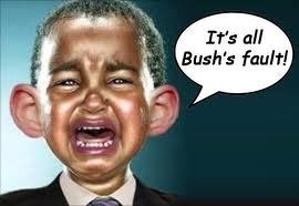 Bush_fault