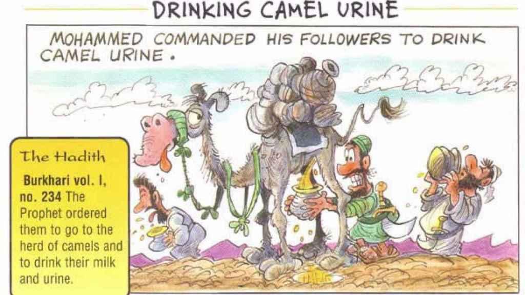 camel-urine-islam-muhammad
